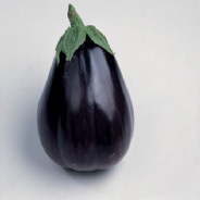 Aubergine Black Beauty - Appx 250 seeds